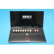 Dental D Universal Chroma scala colori